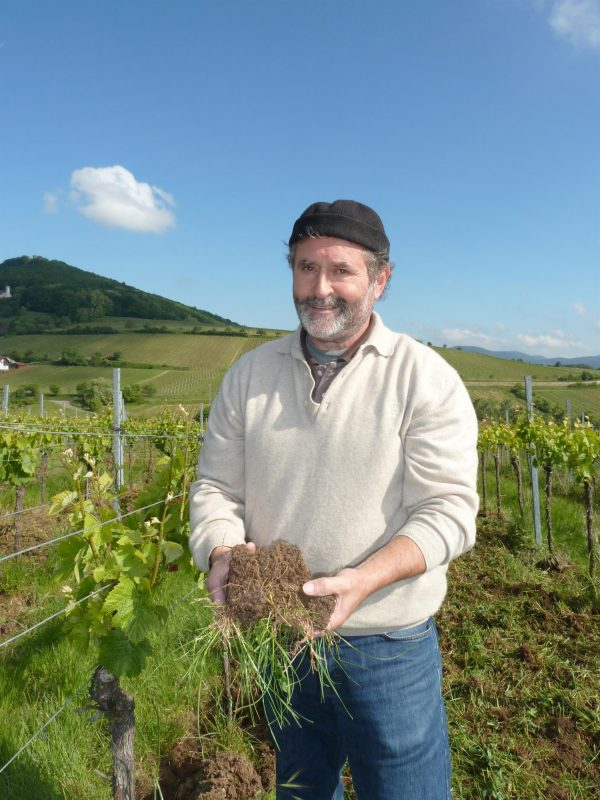wijnmaker Siegrist